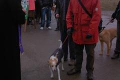 festa-canile-16-gennaio-2011-12