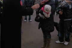 festa-canile-16-gennaio-2011-8